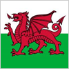 Welsh Apprentiship Certification
